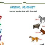 Match the letter to the animal