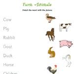 Match the farm animals